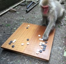 お猿さんが碁?